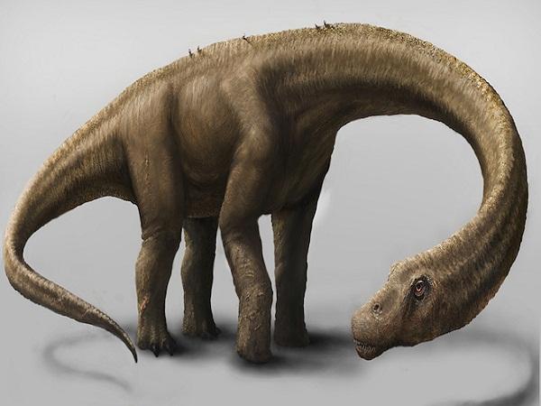 Khung long Argentinosaurus