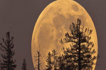 Tìm hiểu về hiện tượng Siêu trăng là gì
