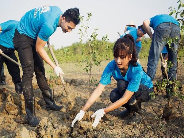 ngày hội trồng rừng