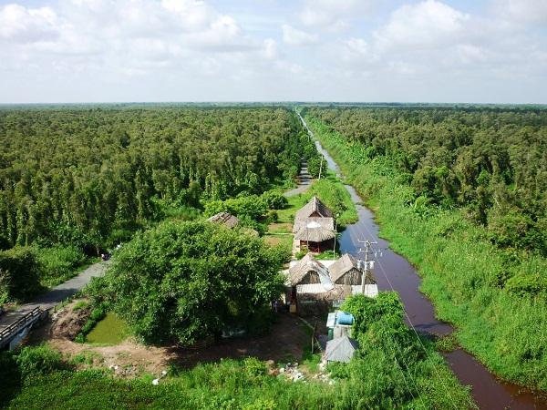 rừng bảo vệ đất